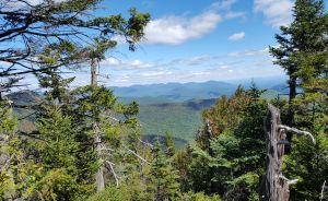 Catskill 3500 Bushwhack Series – Friday and Balsam Cap Mountains – Saturday June 2, 2018